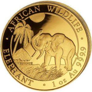 2017-1-oz-somalian-gold-elephant-obv