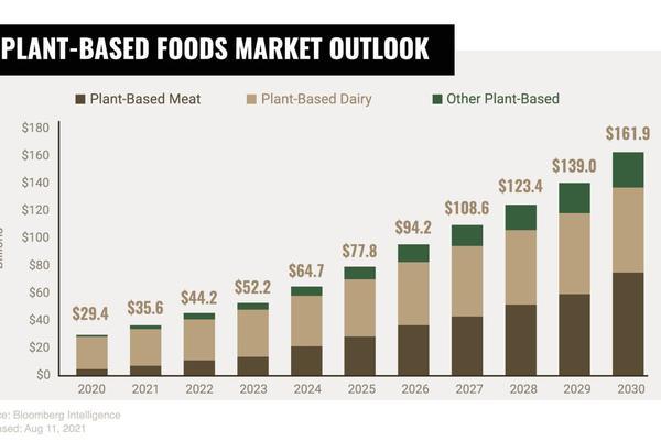 Plant Based Food Market Outlook